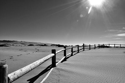 A fence in the desert, black and white photo © Patrick Forian