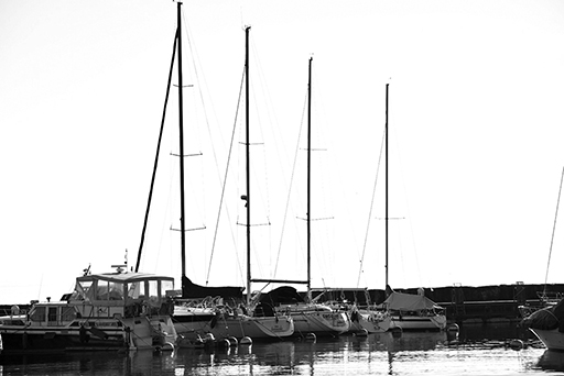 Sailing boats in a marina, black and white photo © Patrick Forian